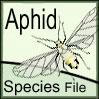 AphidSF: AphidSF: Aphid Species File