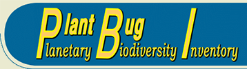 PBI Plant Bug: PBI Plant Bug: On-line Systematic Catalog of Plant Bugs (Insecta: Heteroptera: Miridae)