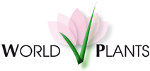 World Plants